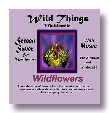 Wildflower Screen Saver Cover