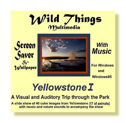 Yellowstone screen saver Cover